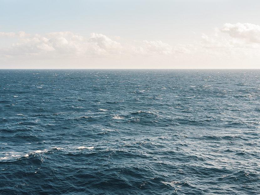Moen Launches NFT Auction to Help Combat Ocean Plastic Pollution