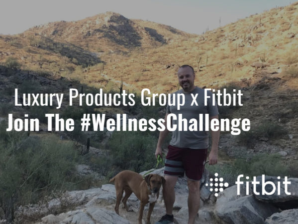 IMARK Plumbing and Luxury Products Group Launch Partnership with Fitbit 1