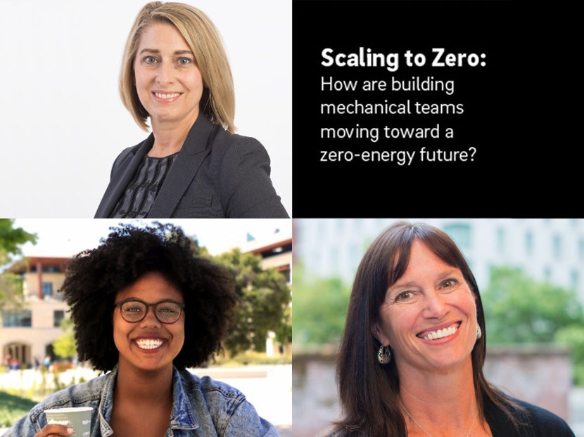 "Panel of Sustainable Building Experts to Deliver ""Scaling to Zero"" Webinar by REHAU 2"
