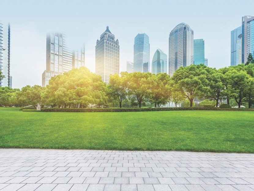 Sloan Launches Sustainability Resources on Earth Day