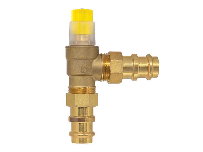 Webstone Differential Pressure By-Pass Valve 2
