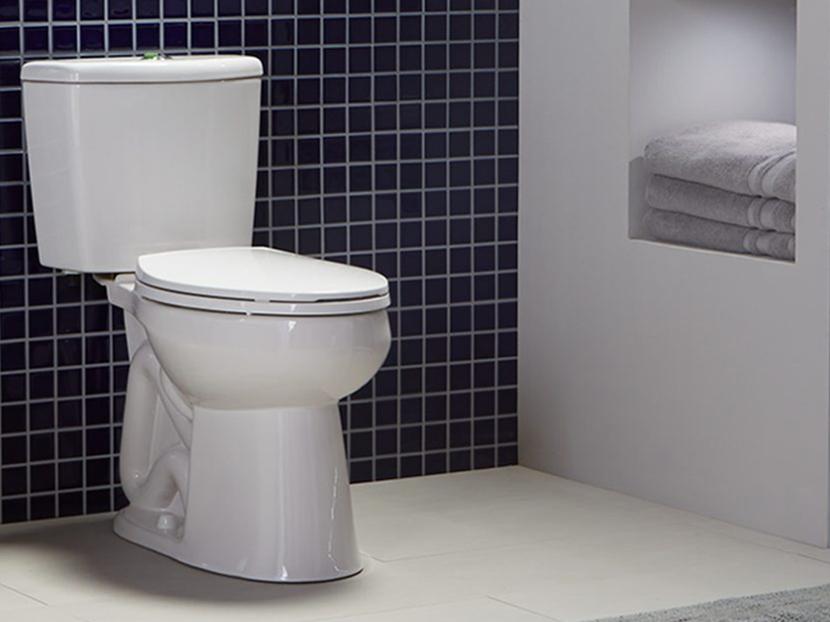 Niagara Conservation Nano Toilet 2018