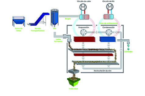 Wastewater to Biomass
