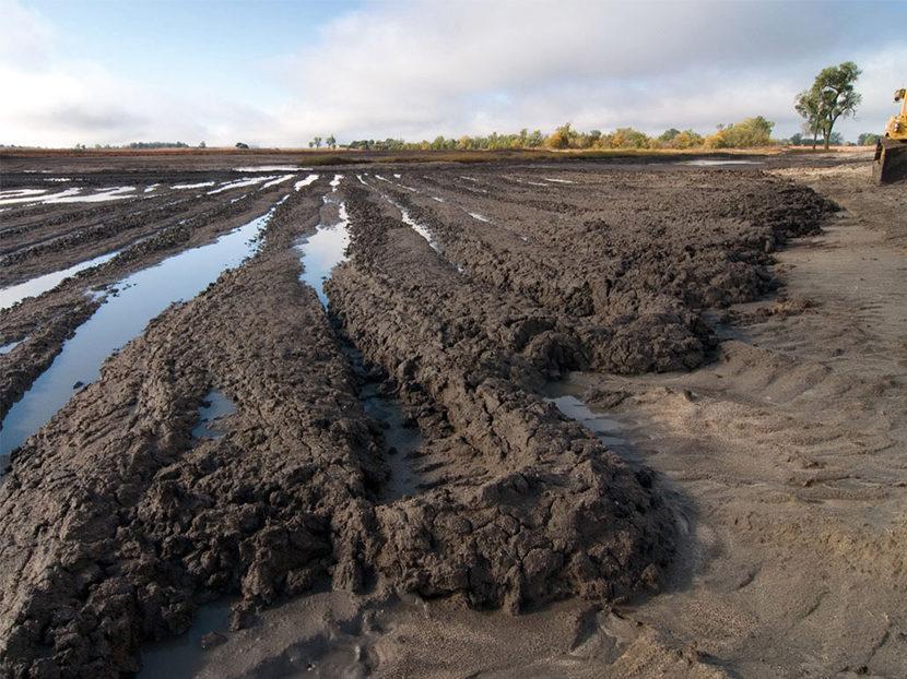 Wasterwater to Biomass