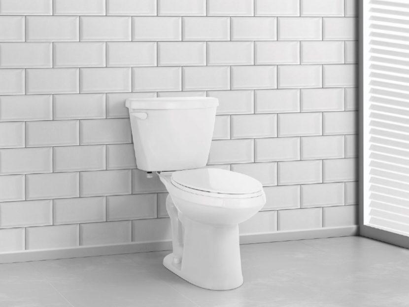 Niagara Liberty Toilet 2