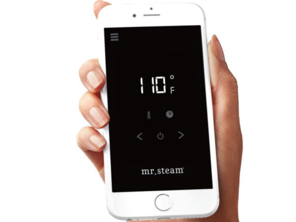 Product-MrSteam-SteamLinx temp screen