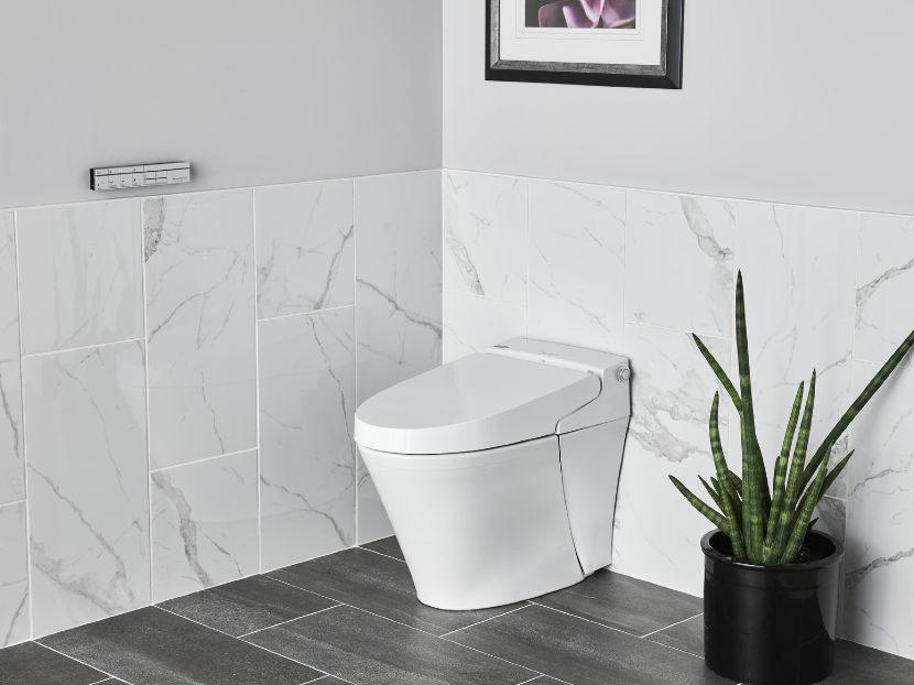 American Standard Advanced Clean 100 SpaLet Bidet Toilet 2