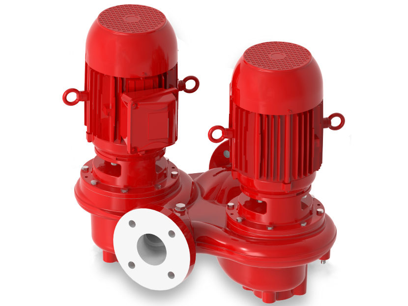 Bell & Gossett Series e-82 Twin Vertical In-Line Centrifugal Pump 2
